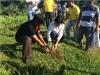 Arbor Day Tree Planting 2014 (11)