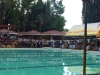 (R1AA) Swimming Competition (3)