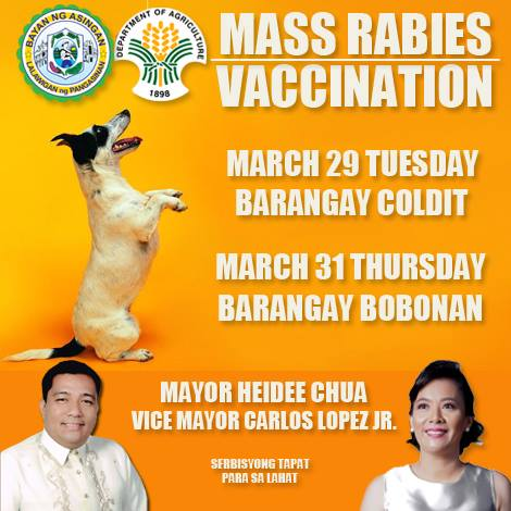 FREE ANTI-RABIES VACCINE FOR PETS